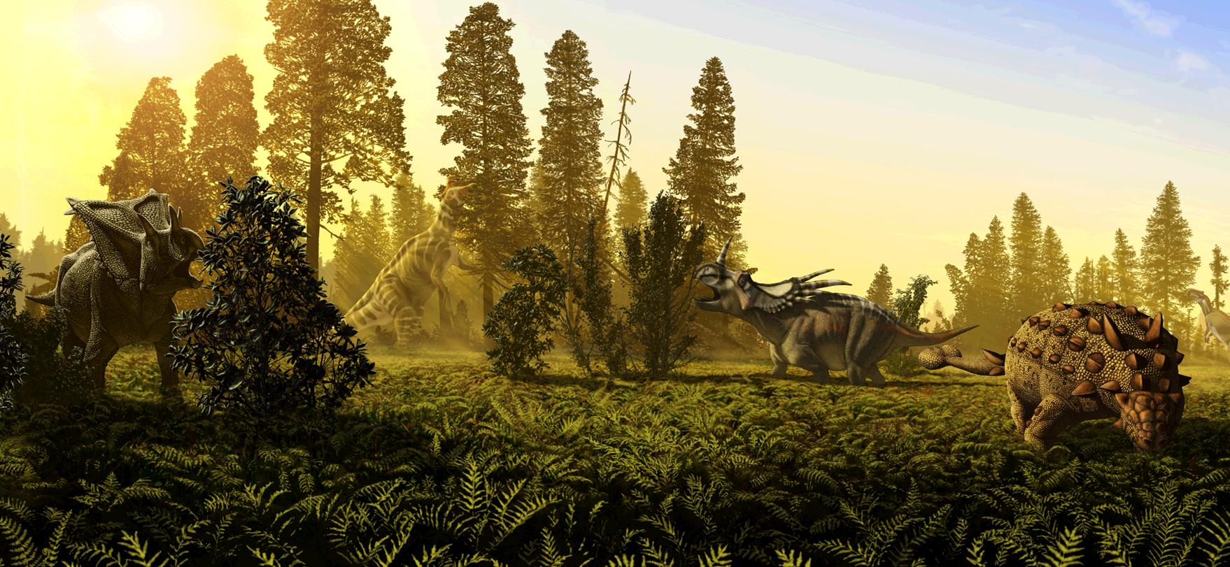 Cretaceous Wildlife