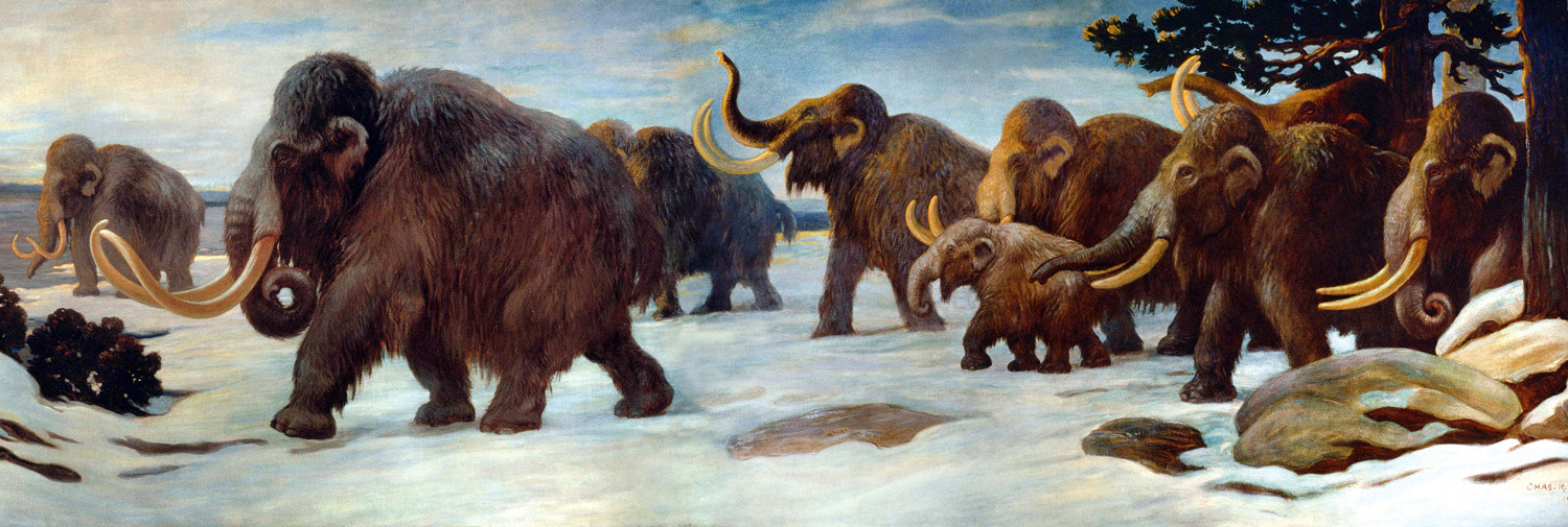 Woolly Mammoths by the Somme River